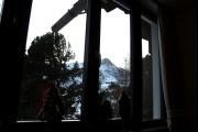 Vorschau Wildwechsel Blick aus dem Fenster